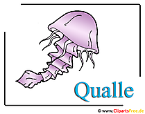 Qualle Clipart-Bild im Cartoonstil free download