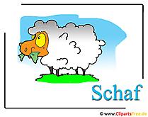羊漫画のクリップアート無料