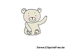 Teddybaer - dierlijke foto's gratis