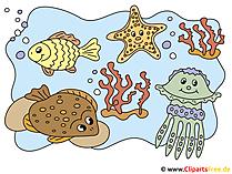 水中世界の絵