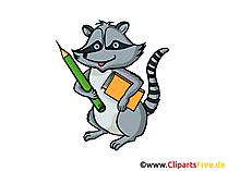 Wasbeer clipart, grafisch, illustratie, foto gratis