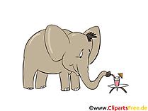 Elefant trinkt Cocktail Clipart, Bild, Illustration