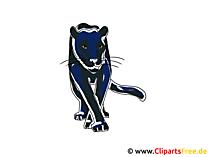 Puma Clipart Pantera