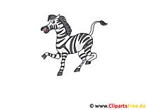 Zebra Clipart