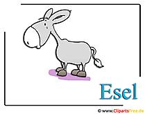 Zoo Clipart Cartoon Donkey
