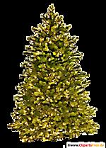 Arbre de Noël clipart transparent