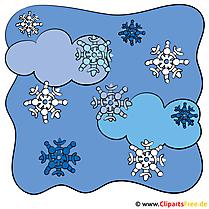Schnee Bild
