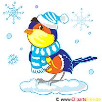 Dompfaff, Gimpel Clip Art, Bild, Illustration gratis